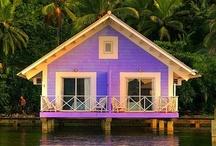 Dream House / by Allie Morgan