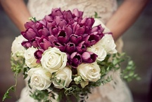 Great Wedding Ideas... / As a wedding photographer, I love LOVE STORIES!!  This board is a gift to my brides and all women in LOVE!  Ideas for wedding decor, gowns, flowers, photography, even marriage tips and inspiration.  Enjoy!
