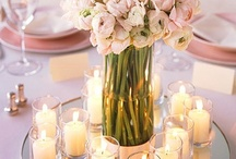 wedding decor. / by Sierra Reuter