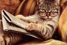Reading/Books