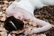 T H E M E ~~ Autumn Colors