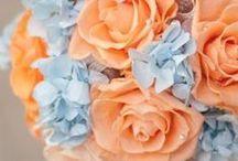 T H E M E ~~ Blue And Peach