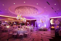 Wedding of My Dreams / by Ava Marie