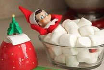 eLf oN tHe sHeLf / by Natalie-Kate Campbell