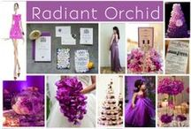 Pantone Color of the Year 2014: Radiant Orchid! / Get inspired by the hottest color of 2014 (according to the Pantone color gods!)