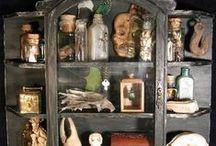 Cabinets de curiosité & co