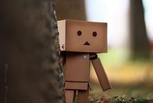 Amazon Box - DANBO / by Gabriela Donati