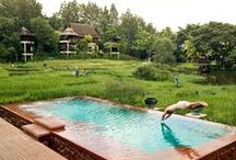Talk of the town / Explore Four Seasons Resort Chiang Mai based on true stories! / by Four Seasons Chiang Mai