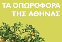 Τα οπωροφόρα της Αθήνας / Εικαστικές προσεγγίσεις στο ομότιτλο βιβλίο του Σωτήρη Δημητρίου, σε συνεργασία με τις εκδόσεις Πατάκη  Ομαδική εικαστική έκθεση στην IANOS Αίθουσα Τέχνης
