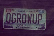 License plate humor / by Laura Snyder-Sobetski