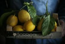 Fruits and vegetables - photography
