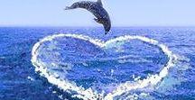 Meren elämää