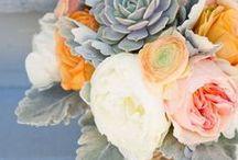 Weddings / Everything wedding related. Wedding Flowers. Desserts. Gifts.