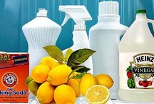 Household Cleaners & Pesticides / by Sherry Mason