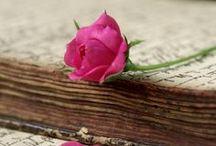 Skaistums slēpjas grāmatās / Grāmatas, ziedi un neaptverams miers...