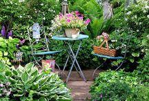 Bienvenue au jardin / #garden #jardin
