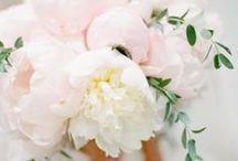 Bridal bouquet with peonies - bruidsboeket met pioenrozen / Bruidsboeket met pioenrozen zijn mijn favouriet! I love it!! / by Wedspiration - leuke ideeen voor je bruiloft