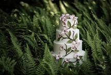 AP Signature Cake Gallery