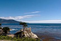 NorCal  / by Raylan White