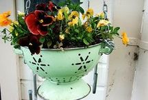 Creative Gardening Containers