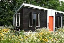 dreams of building a cabin