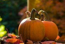 Season • Autumn