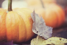 I love Fall! / by Alison Hile