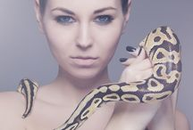 Snake shoot