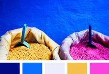 color palettes / color combos