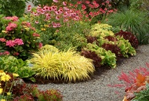 Curb Appeal / Curb Appeal Designs / by Lorilee Hull