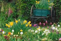 """Pretty plants and gardens / I love a poem that ends with these words...""""You are nearer God's heart in a garden than anywhere else on earth."""" I am not a great gardener, but love gardens. / by Fiona Clerk"""