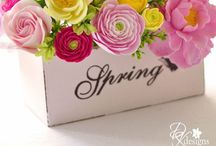 Seasons : Spring / We have similar seasons all year in Durban, so a fresh season after winter is very appealing.