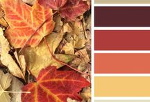 Color Palette / by Becky D
