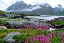 SERENE SCANDINAVIA / The Scandinavian countries have always attracted me. There seems to be a pristine beauty in the fjords, glaciers, lakes, and mountains.