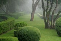 Labyrinths, mazes and topiary