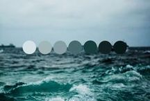 Color Palettes / by Nicol Rene