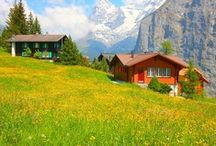 Switzerland  / by Ella Pusell