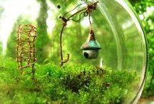 <3 INTERESTING> Fairy Gardens / by Melissa Martin