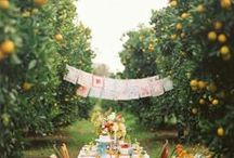Not my Wedding / I can't wait to be an event planner :) / by Heather McBreen