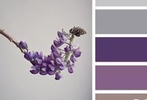 Color Palettes / by Kim Graf