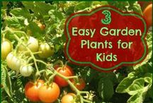 Gardening Tips & Ideas / Tips to help you start a garden and keep it going. / by Melissa Hurst {SavingCentsWithSense.net}