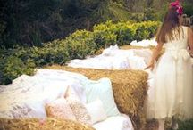 Sleepy Creek Wedding Decoration Ideas / by Sleepy Creek Vineyards