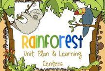 Rainforest / Jungle Theme / Preschool Theme