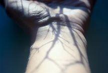 TREES / Inspirational board #trees #hands #blackandwhite #wood #tattoos