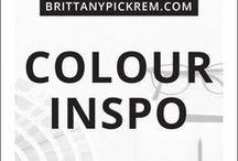 Branding  |  Color Pallet Inspiration