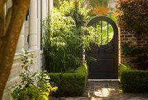 Beautiful Garden / by Svetlana Timoshenko