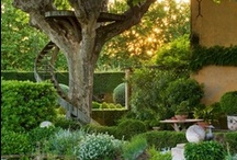 patio/garden / by The French Tangerine (jan vrana)