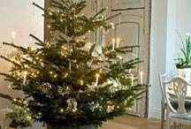 Christmas / by Svetlana Timoshenko