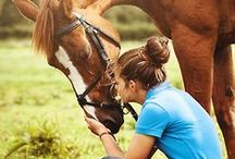 """SUMMERTIME 