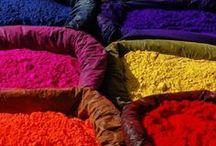 Luscious Color / by Delane@AutumnWoodBears